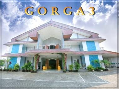 Gorga 3